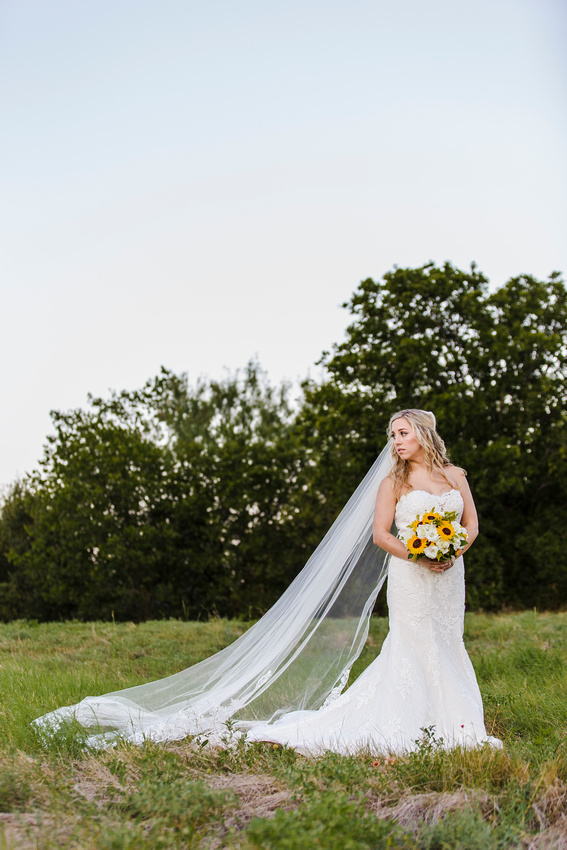 dfw cola wedding photography photography_cola Allie Bridal_MG_0459