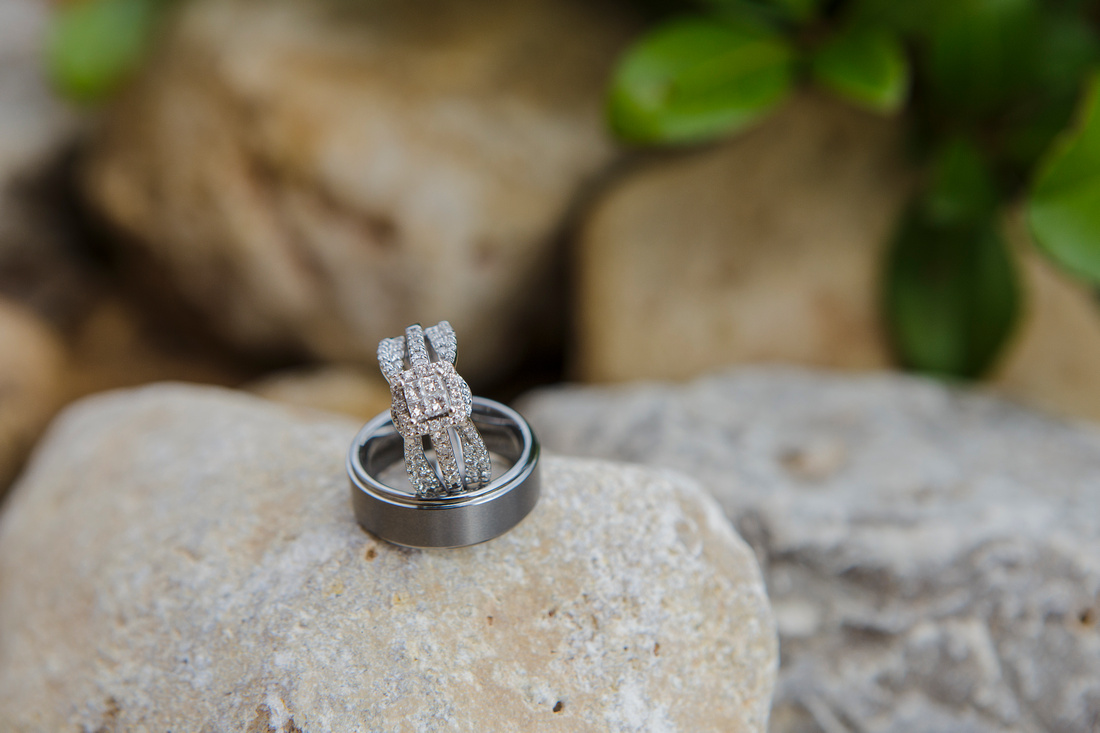 Acuna Wedding_Cola Photography221